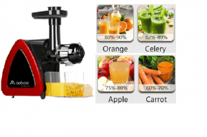 Top 5 Cold Press Juicer under 100 to buy in 2020
